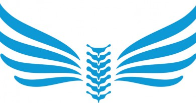 Kiropraktor-Haagensen-logo