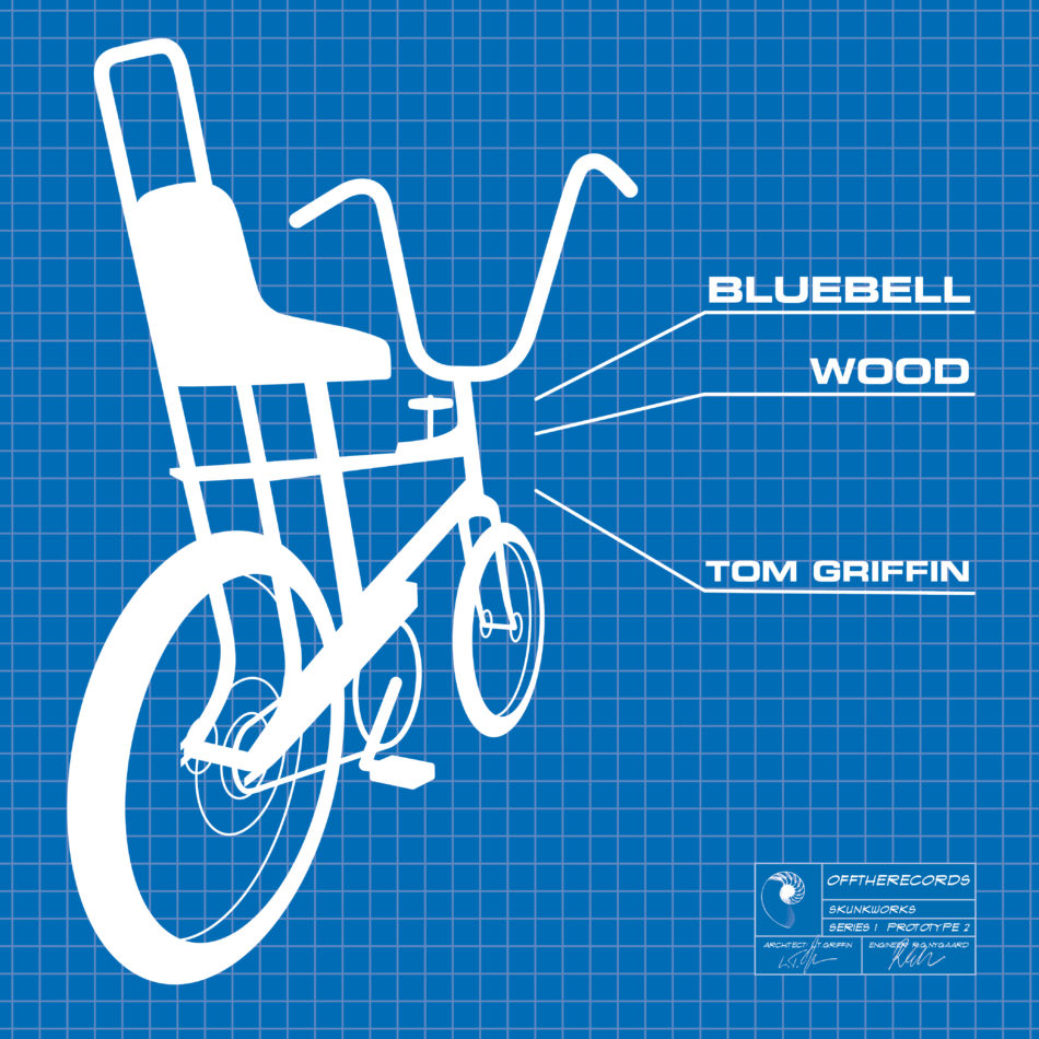 bluebell-Wood-Tom-Griffin